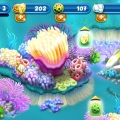 nemos-reef-3